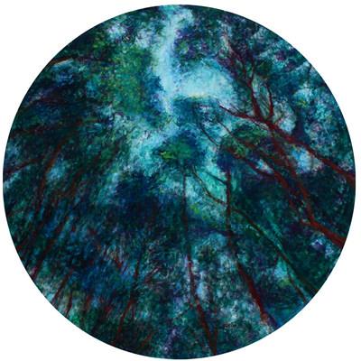 [A0179-0019] 숲