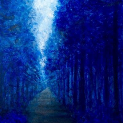 [A0179-0036] 사려니숲. no-11