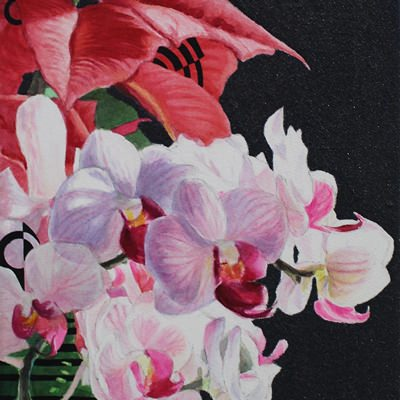 [A0181-0028] 사물탐구1(가을,오전 햇살,선물)