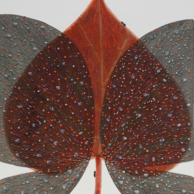 [A0184-0027] 나비 상상하다