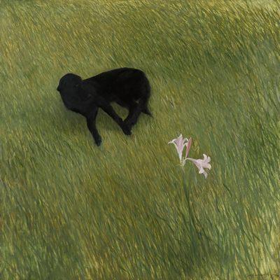 [A0187-0016] A Landscape In Mind - wanderer