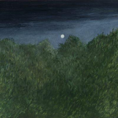 [A0187-0017] A Landscape In Mind - A windy night
