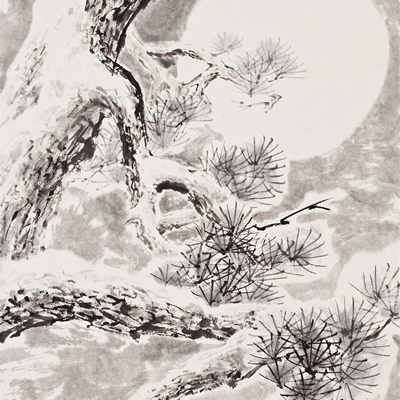 [A0210-0009] 설송(雪松) / Pine tree in the snow