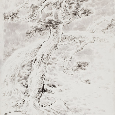 [A0210-0012] 설송(雪松) / Pine tree in the snow