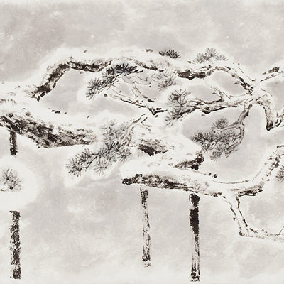[A0210-0014] 와룡송(臥龍松) / Pine tree looks like a Dragon