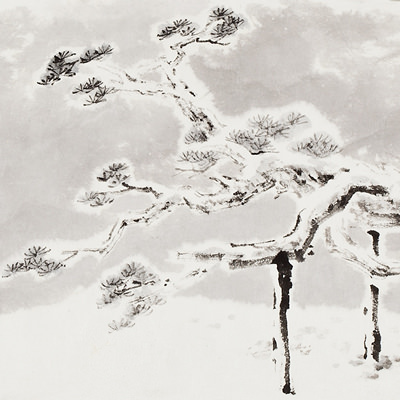 [A0210-0015] 와룡송(臥龍松) / Pine tree looks like a Dragon