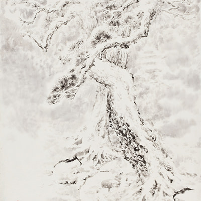 [A0210-0017] 설송(雪松) / Pine tree in the snow