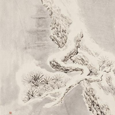 [A0210-0024] 설송(雪松) / Pine tree in the snow