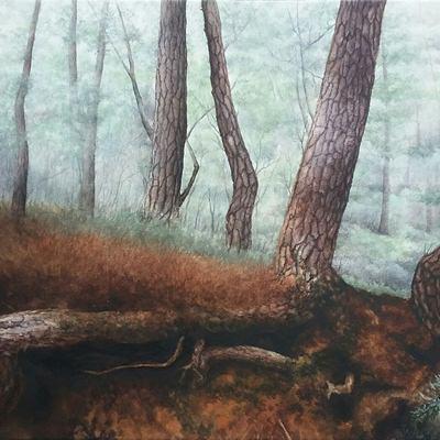 [A0232-0017] 깊은 숲