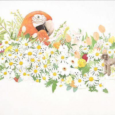 [A0235-0030] 내 인생은 꽃밭 (My life is flower garden)