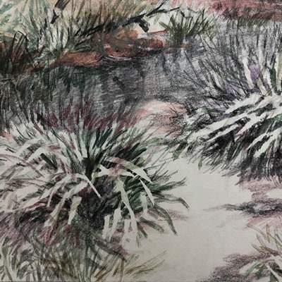 [A0242-0012] landscape2