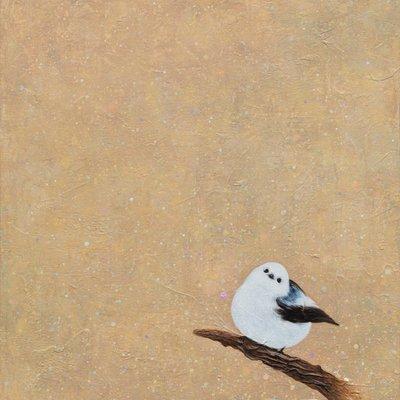 [A0257-0065] 흰머리오목눈이1