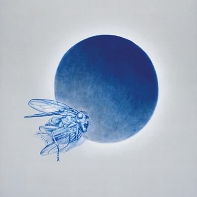 [A0269-0040] Fly away17(검은 태양)