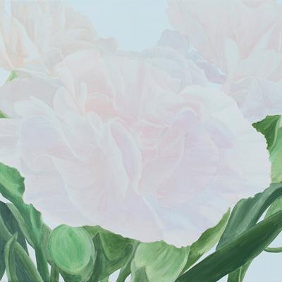 [A0275-0046] Carnation series 4