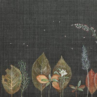 [A0285-0037] 낙엽숲