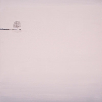 [A0294-0004] WHITE DEER-잔잔한 호수 되어