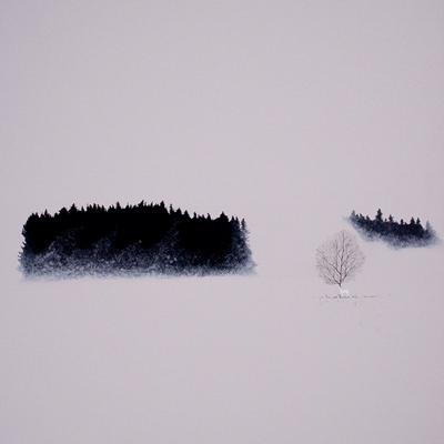 [A0294-0006] WHITE DEER-겨울 숲 몇 발자국 더
