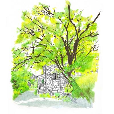 [A0296-0010] 언덕 위 푸른 정원