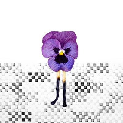 [A0298-0102] 불타오르네#3