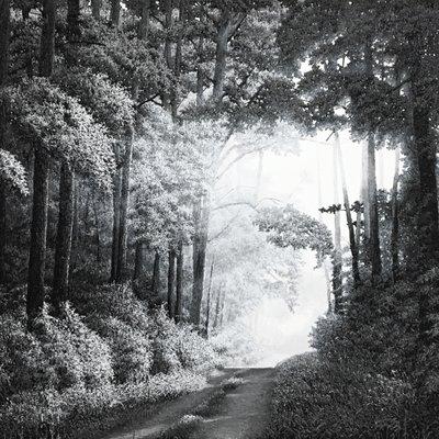 [A0347-0089] 68 casting landscape
