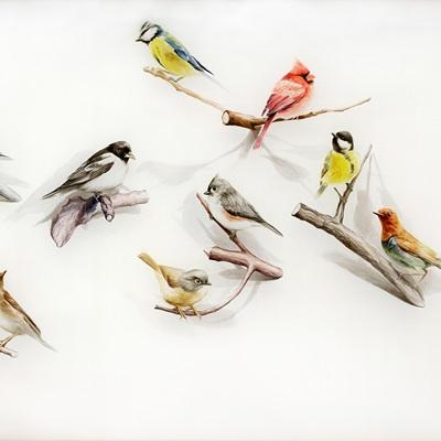 [A0356-0018] Still Life - Birds