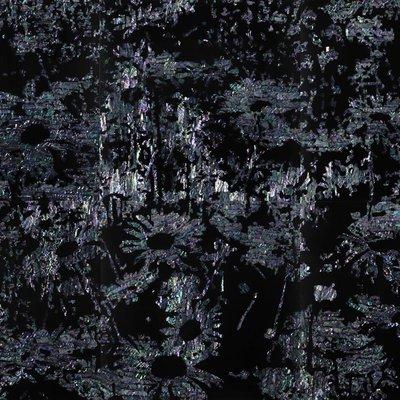 [A0358-0027] 들꽃_1605~10