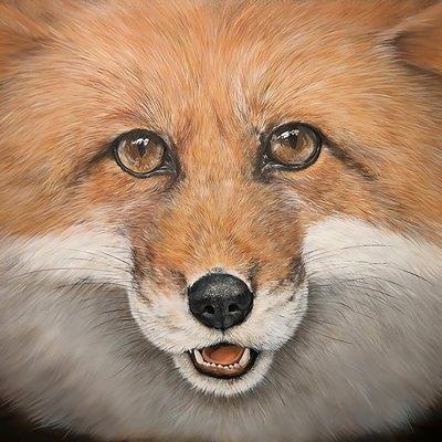 [A0361-0006] fox