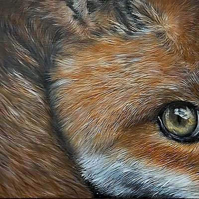 [A0361-0007] Fox2