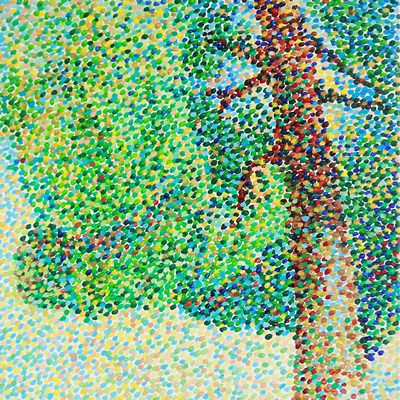 [A0365-0016] cypress