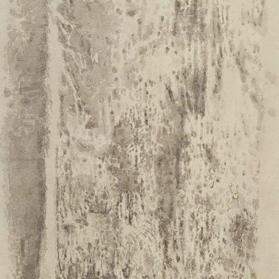 [A0373-0012] 붉은 숲