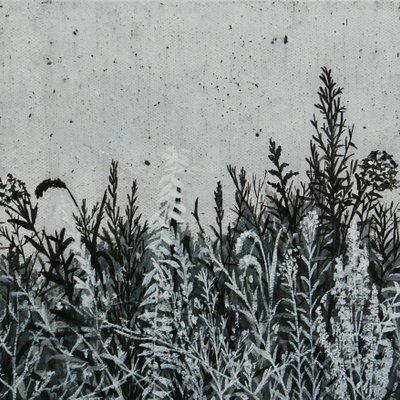 [A0379-0024] 누구나 있는 정원