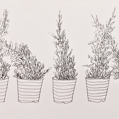 [A0390-0020] 드로잉 - 식물