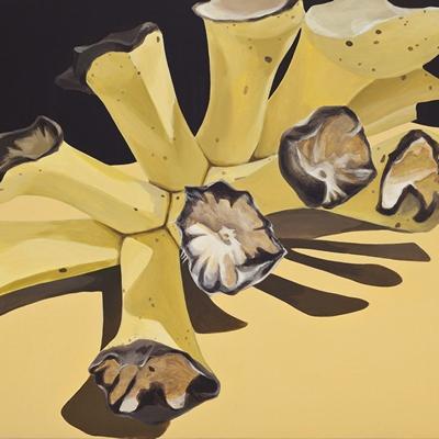 [A0392-0011] Banana