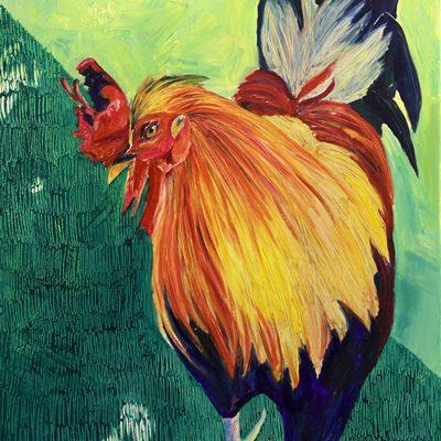 [A0403-0030] kauai rooster