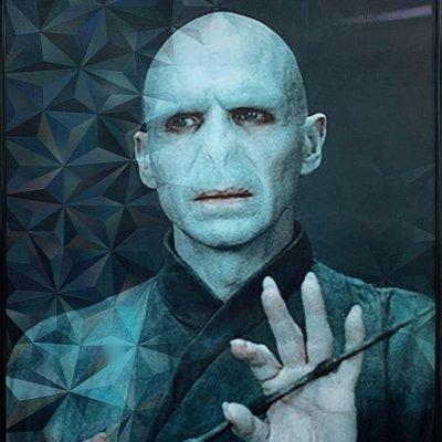 [A0423-0047] 볼드모트 렌티(Voldemort lenti)