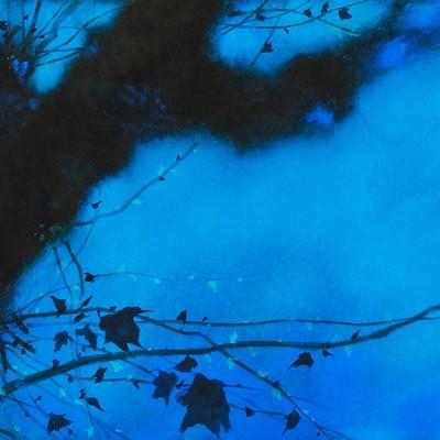 [A0470-0019]  Blue again