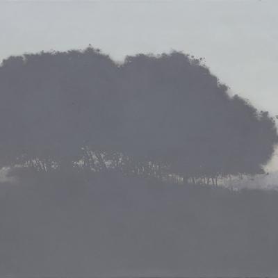 [A0534-0003] 큰 공간의 소리 - 숲