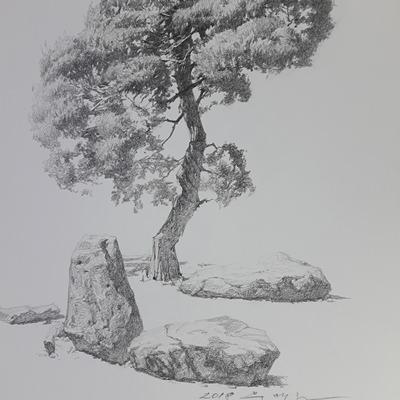 [A0534-0032] 나무와 돌