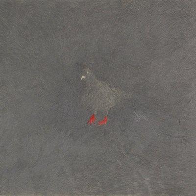 [A0542-0001] 붉은발