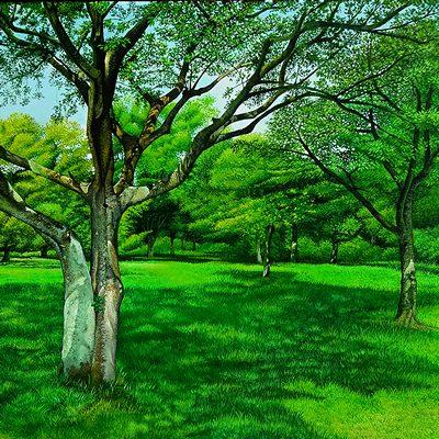 [A0547-0013] 제주의숲_No4 조천만세동산숲
