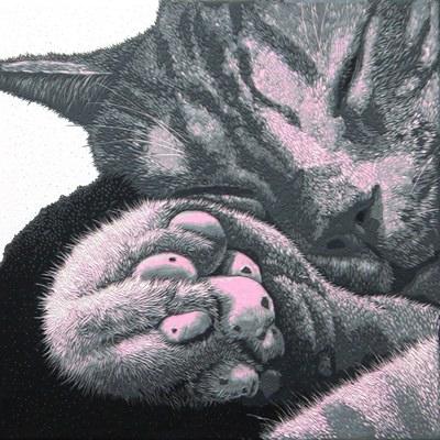 [A0549-0019] CAT-pink