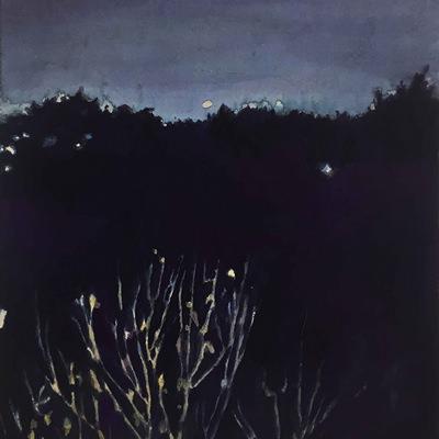 [A0556-0016] a still night