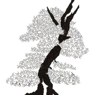 [A0592-0008] 더미 소나무 #42 (Pine Dummy #42)