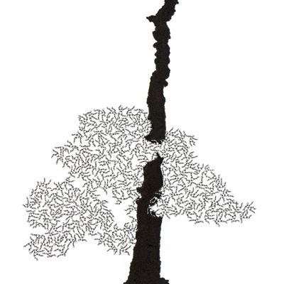 [A0592-0009] 더미 소나무 #55 (Pine Dummy #55)