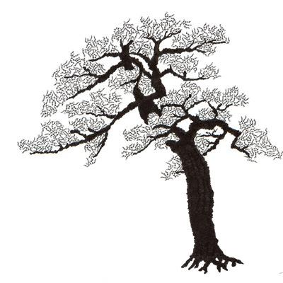 [A0592-0030] 더미 소나무 #2 (Pine Dummy #2)