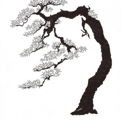 [A0592-0033] 더미 소나무 #7 (Pine Dummy #7)