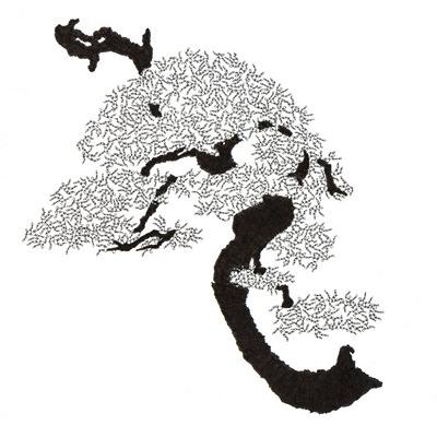 [A0592-0034] 더미 소나무 #8 (Pine Dummy #8)