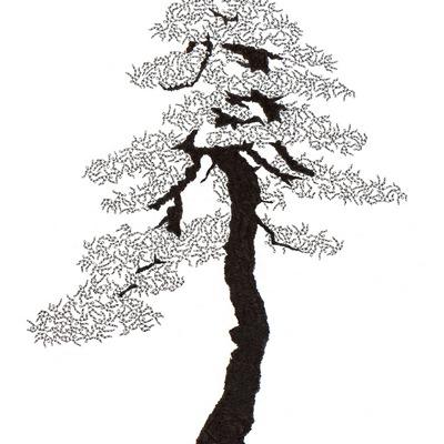 [A0592-0048] 더미 소나무 #31 (Pine Dummy #31)