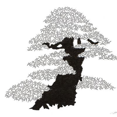 [A0592-0053] 더미 소나무 #37 (Pine Dummy #37)