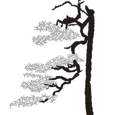 [A0592-0068] 더미 소나무 #60 (Pine Dummy #60)
